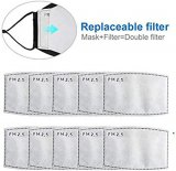 Replacement PM2.5 Filters for Face Masks x 2